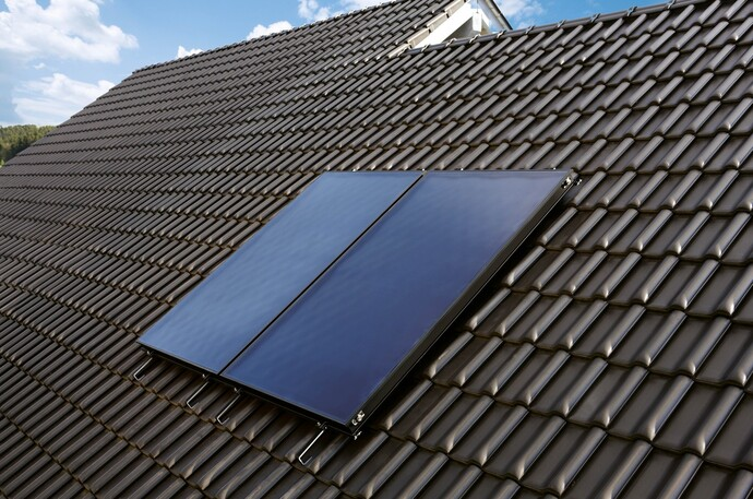 Market introduction of solar thermal systems by Vaillant